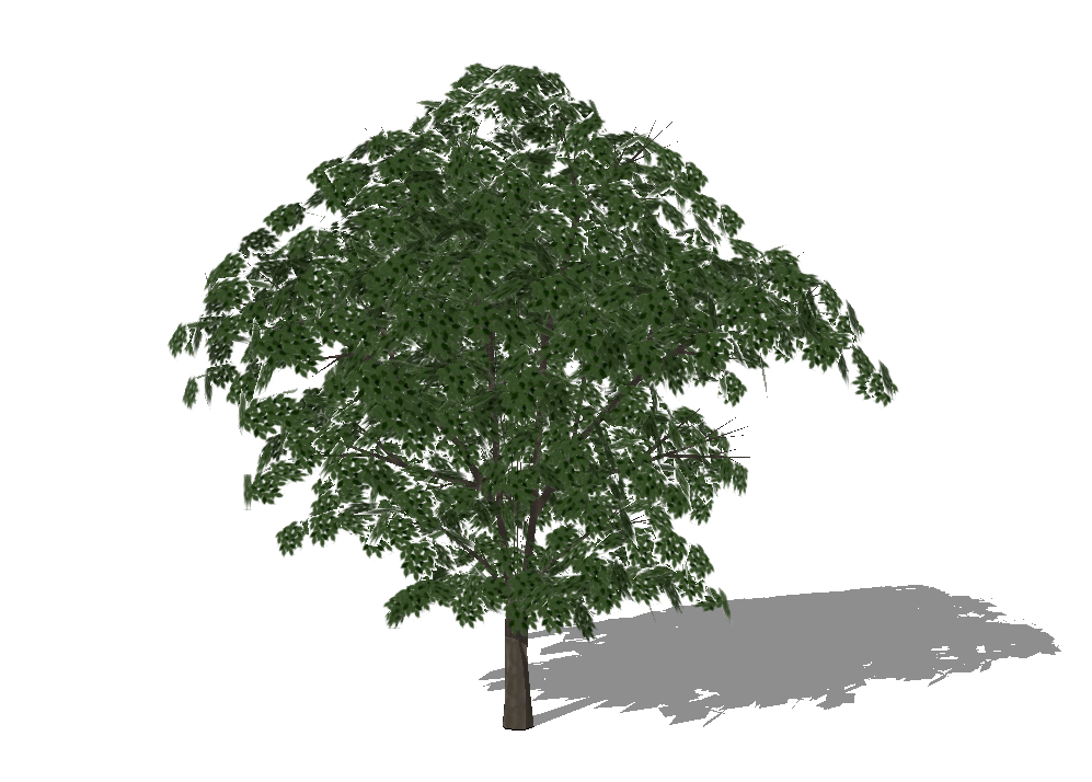 3D Plants For Sketchup...