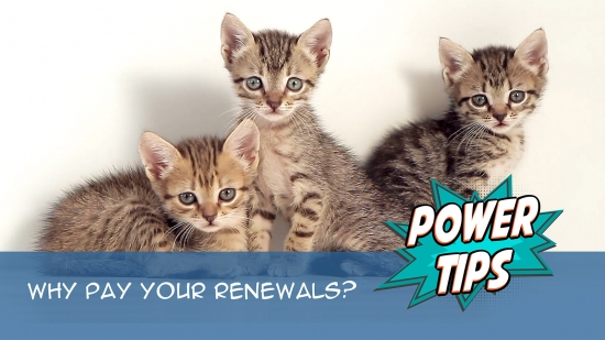Power Tip: Why Pay Your Renewals?