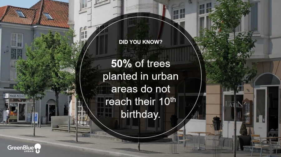 Designing Trees into the Urban Landscape